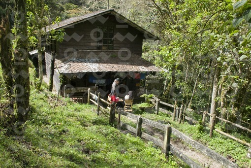 Refugio Reserva Acaime,Salento,Quindío / Acaime Reserve Shelter, Salento, Quindío