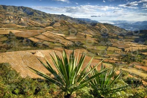 Region de Guaitarilla,Nariño