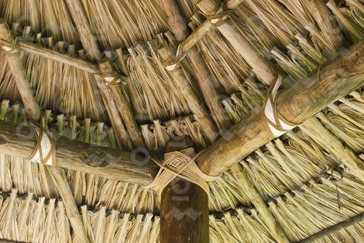Techo de palma,Córdoba / Palm Roof,Cordoba