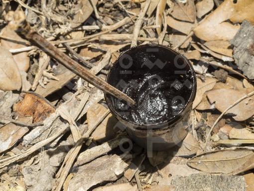 Ambil,Pasta de tabaco / Ambil,Snuff paste