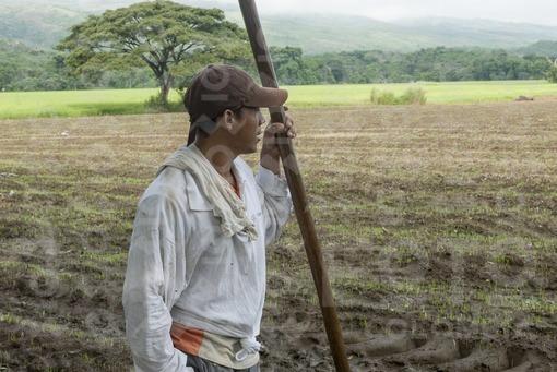 Agricultor,Armero,Tolima / Farmer,Armero,Tolima