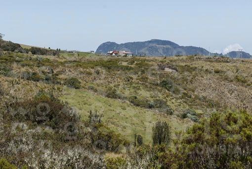 Páramo del Volcán Nevado del Ruiz.Murillo,Tolima / Paramo.Nevado del Ruiz Volcano,Murillo,Tolima