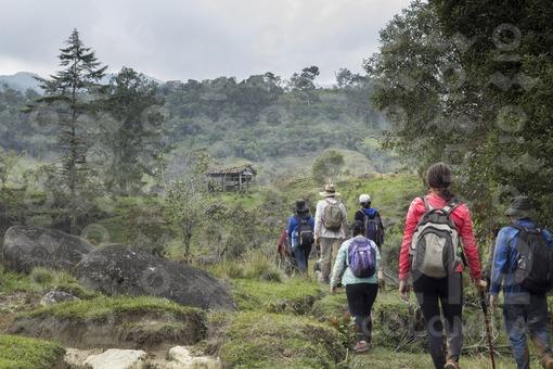 exploradores caminantes