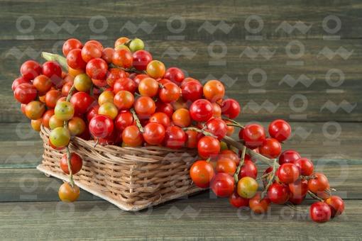 Corozo fruta tropical (Bactris guineensis)