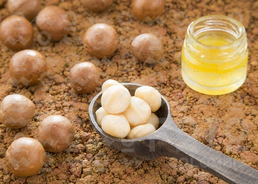 Aceite y nueces de macadamia (Macadamia integrifolia)
