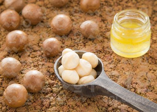 Aceite y nueces de macadamia (Macadamia integrifolia)