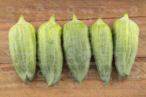 Caigua o pepino de relleno (Cyclanthera pedata)