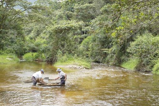 Personas trabajando la minería artesanal en los ríos colombianos